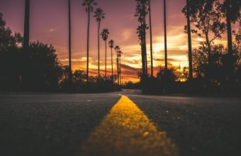 City Dark Dawn Dusk Evening Landscape Light Pavement Road Silhouette Street Sun Sunset Travel Trees Wallpaper 1600x1280 340x220