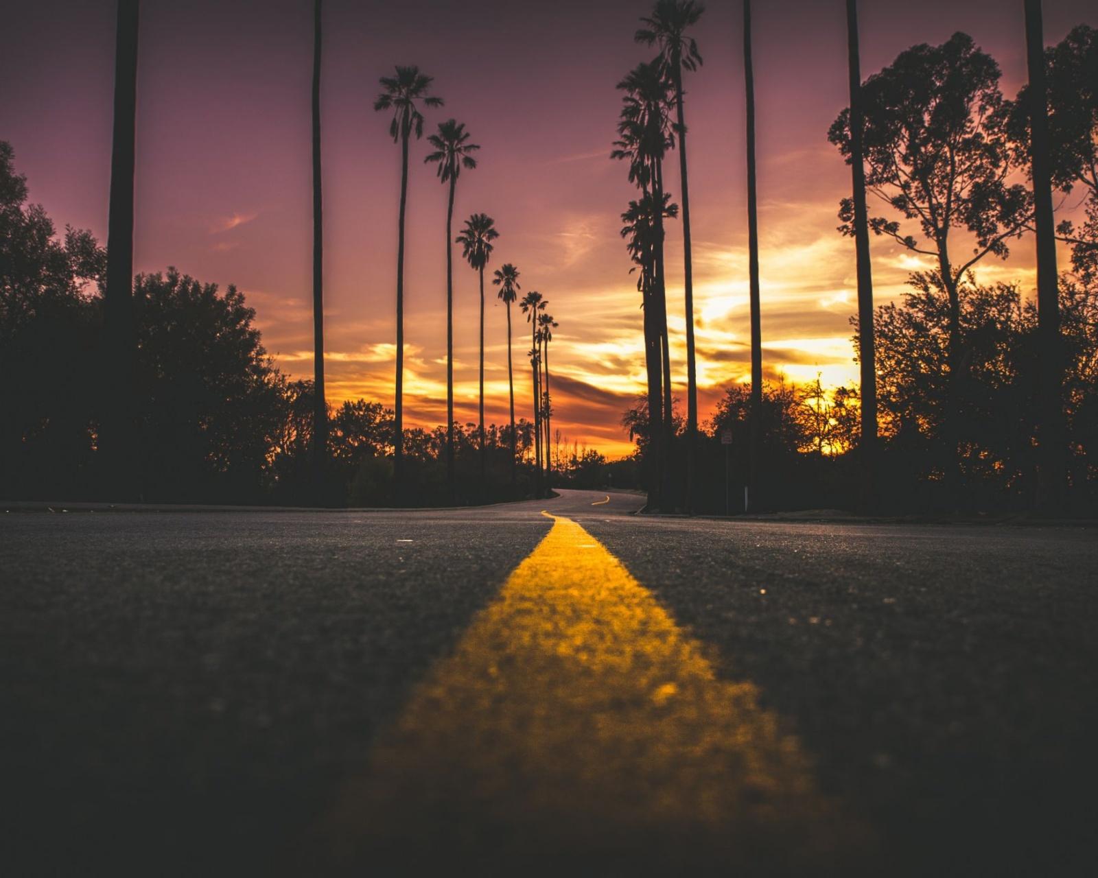 City Dark Dawn Dusk Evening Landscape Light Pavement Road Silhouette Street Sun Sunset Travel Trees Wallpaper