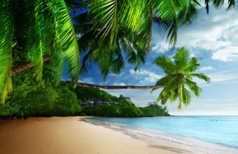 Coast Paradise Tropical Sea Wallpaper 1600x1280 340x220