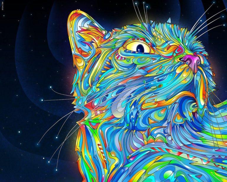 Crazy Desktop Wallpaper 09 1600x1280 768x614