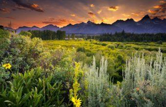 Grand Teton National Park Wallpaper 1600x1280 340x220