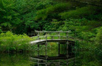 Lake Forest Bridge Nature Garden Reflection Wallpaper 1600x1280 340x220