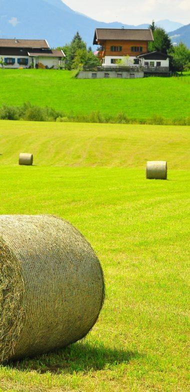 Austria Field Hay House Landscape 1080x2220 380x781