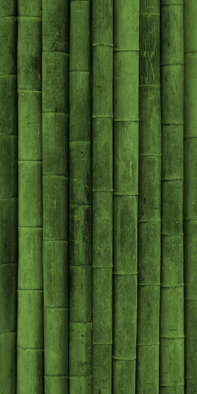 Bamboo Textures 720x1440