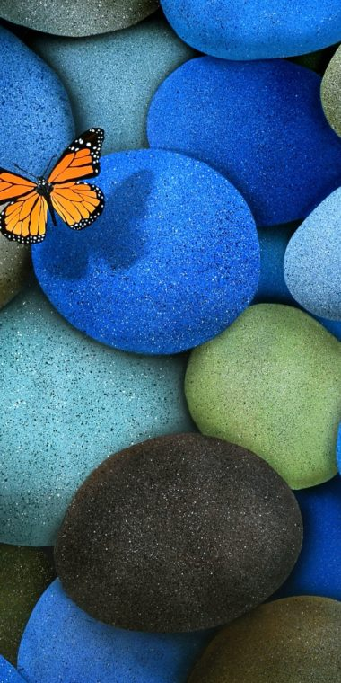 Blue Brown Butterfly Stones 720x1440 380x760