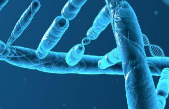 DNA 3D Structure Molecule Pattern 1080x2220 340x220