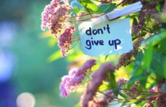 Dont Give Up Wallpaper 09 1366x768 340x220