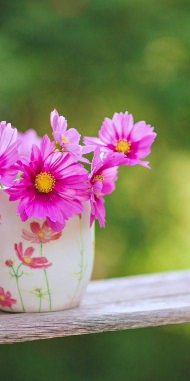 Flowers Garden 720x1440 380x760