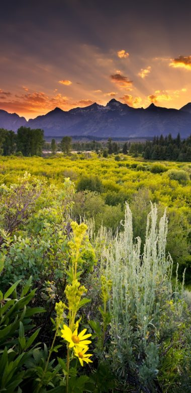 Grand Teton National Park Sunset 1080x2220 380x781
