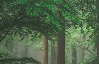 Green Trees 1080x2220 340x220