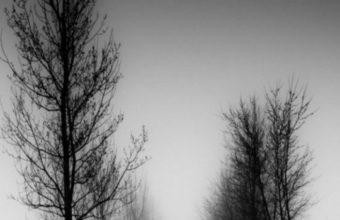 Landscape LG G3 540x960 340x220
