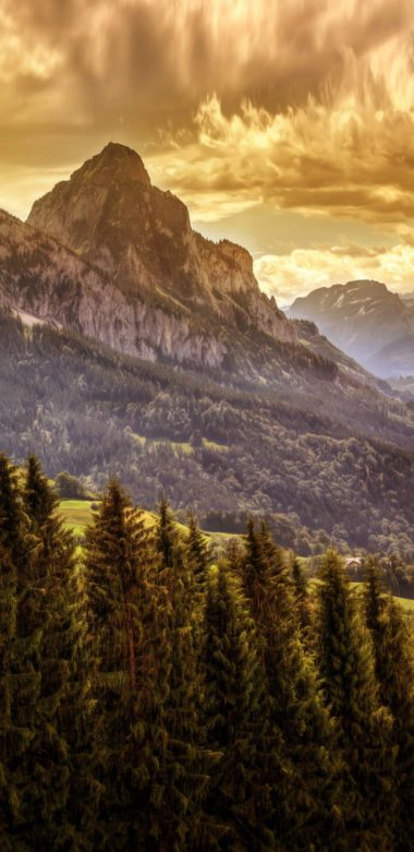 Mountains Forests Scenery Nature 1080x2220 380x781