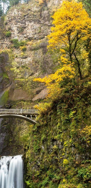Multnomah Falls Columbia River 1080x2220 380x781