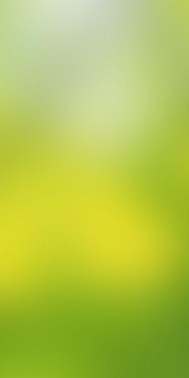 Soft Green 720x1440 380x760