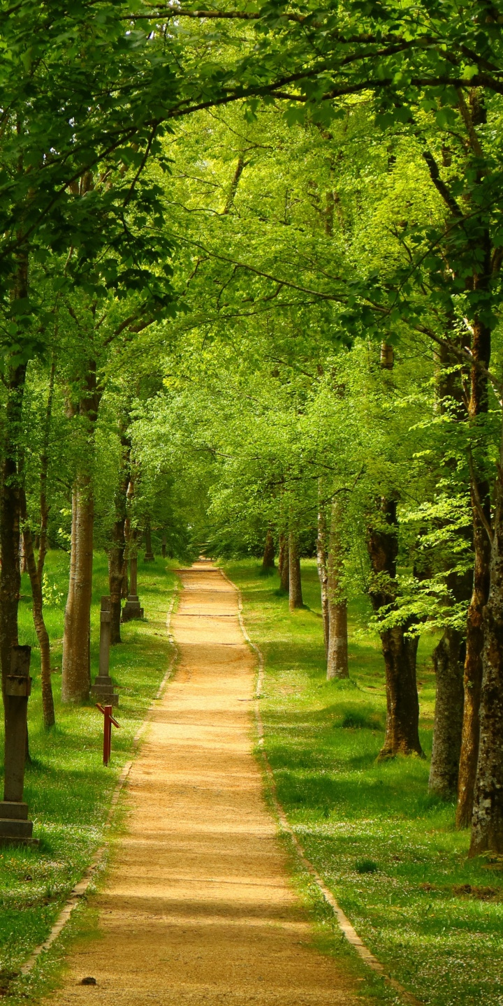 Spain Parks Trees Trail Urkiola Basque Country Nature 720x1440
