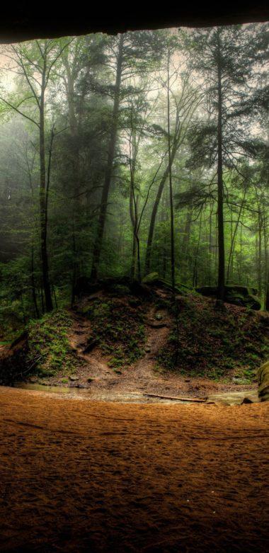 Waterfalls USA Crag Trees 1080x2220 380x781
