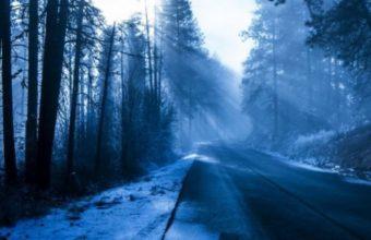 Winter Snow Landscape Nature 540x960 340x220