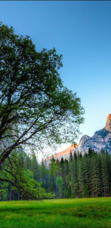 Yosemite 1080x2220 380x781