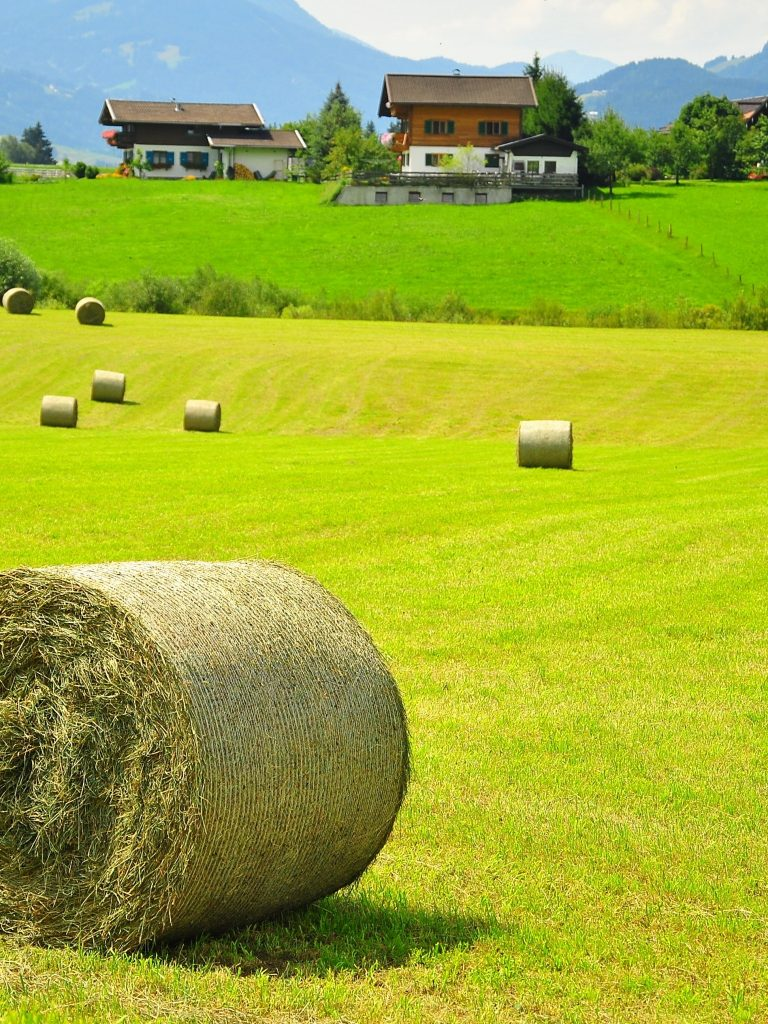 Austria Field Hay House Landscape Wallpaper 1536x2048 768x1024