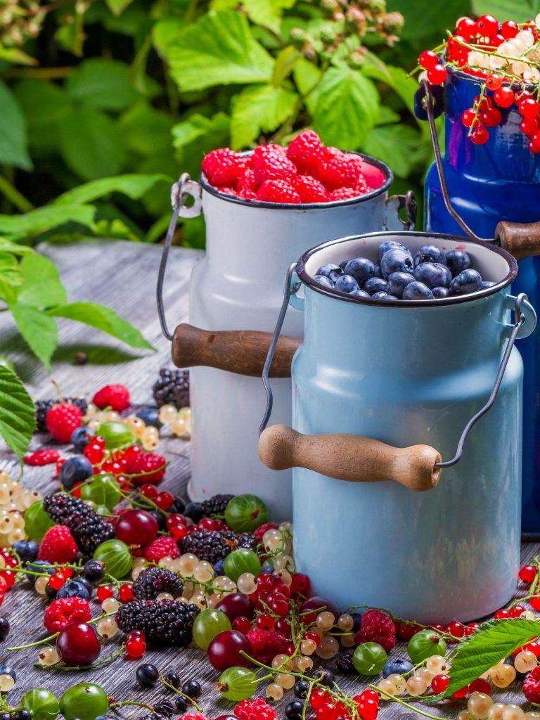 Berries Golubmka Raspberries Wallpaper 1536x2048 768x1024
