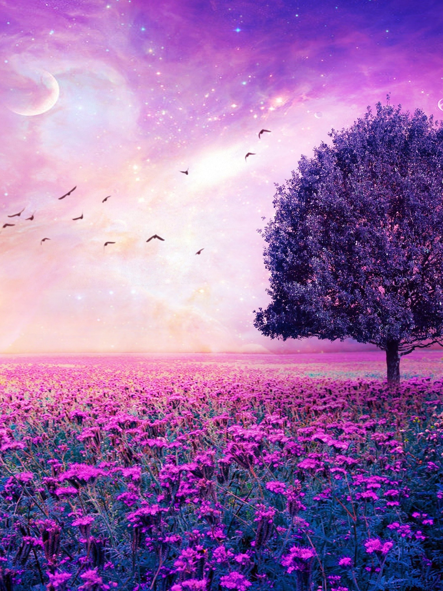 Field Tree 3d Art Stars Bokeh Sky Wallpaper
