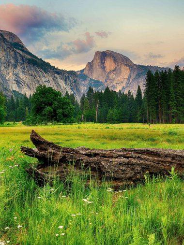 Mountains Trees Landscape Wallpaper 1536x2048 380x507