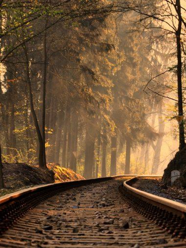 Railroad Forest Train Tracks Wallpaper 1536x2048 380x507