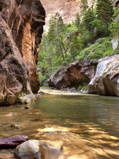 Rock River Trees Landscape Wallpaper 1536x2048 380x507