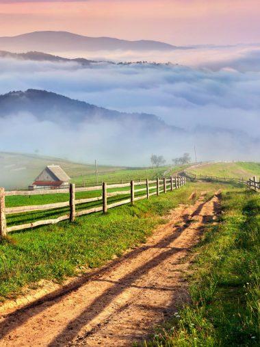 Scenery Roads Grass Fence Wallpaper 1536x2048 380x507