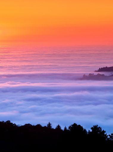 Sea Of Fog Wallpaper 1536x2048 380x507