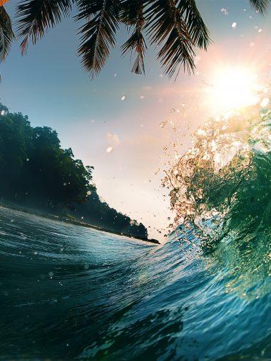 Waves Sea Ocean Beach Palm Trees Wallpaper 1536x2048 380x507