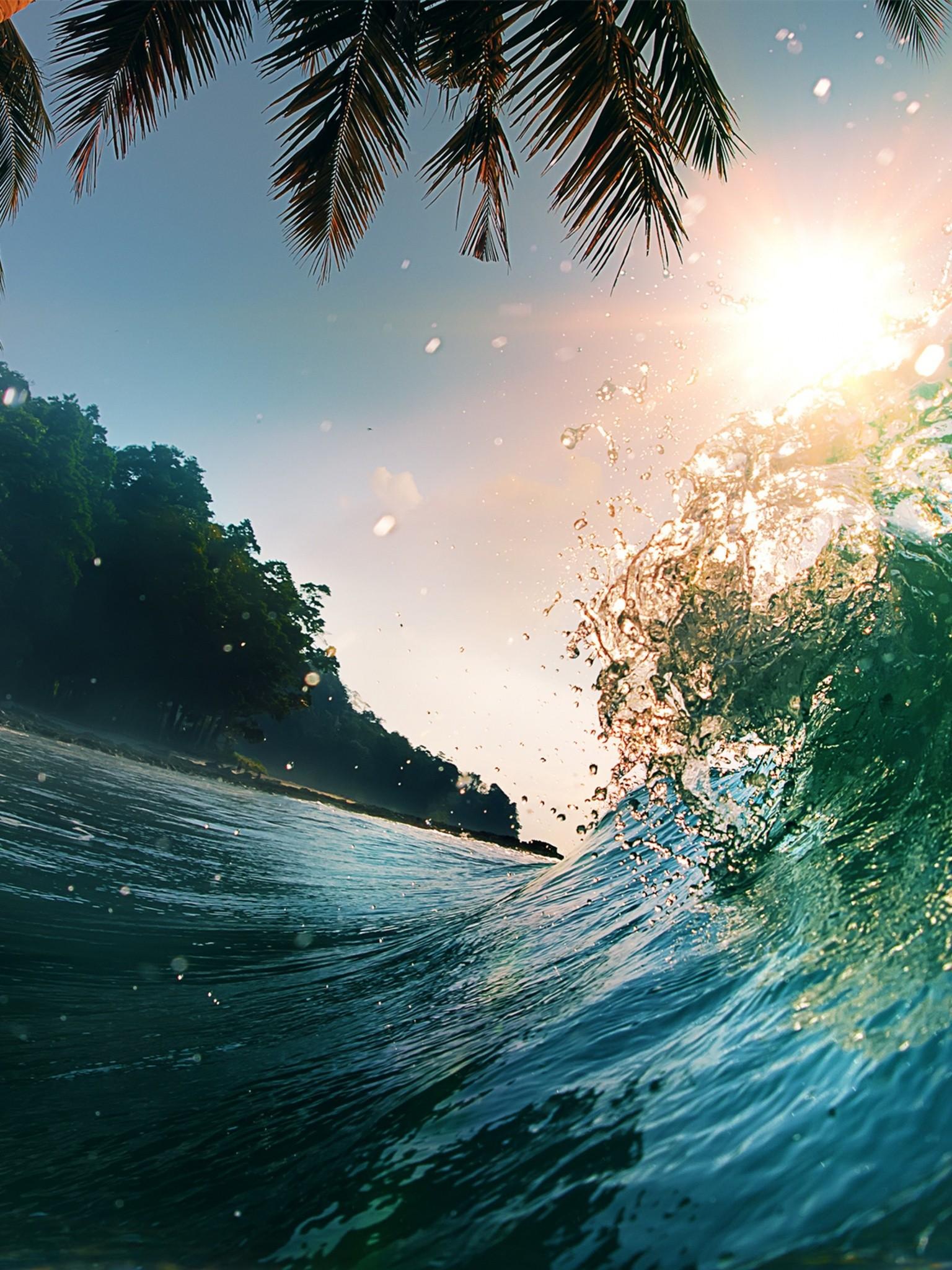 Waves Sea Ocean Beach Palm Trees Wallpaper 1536x2048
