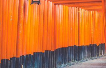 Architecture Art Bright Color 1440x2880 340x220