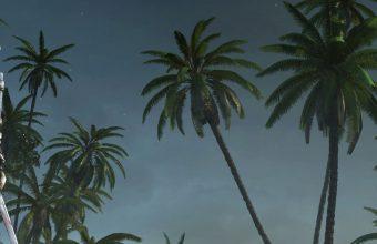 Assassins Creed 4 Black Flag 1440x2880 340x220