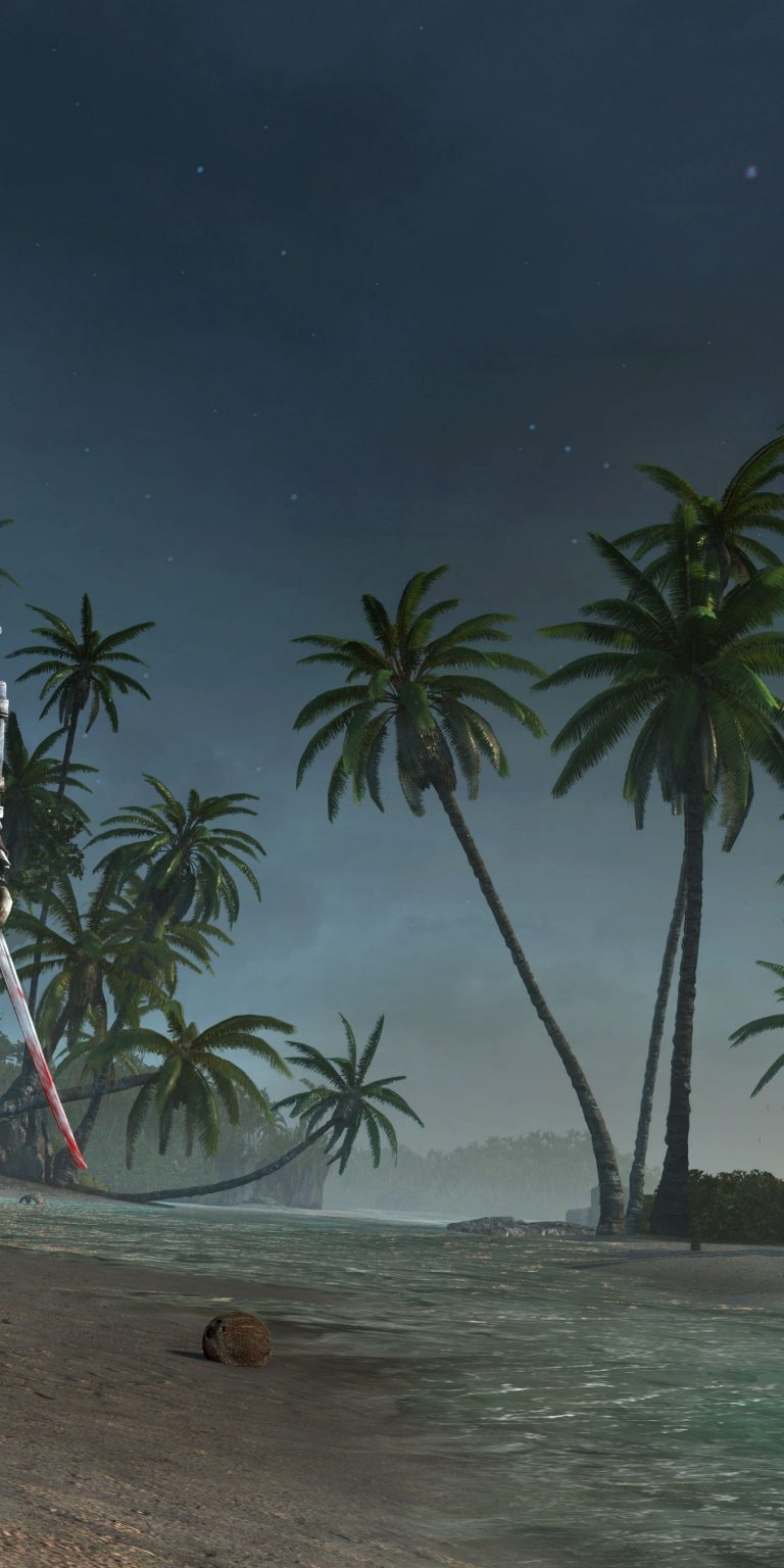 Assassins Creed 4 Black Flag 1440x2880 768x1536
