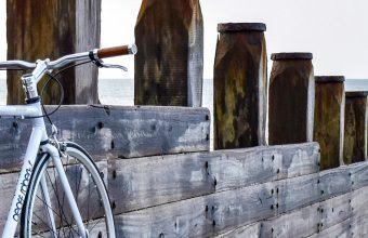 Beach Bicycle Bike Nature Ocean 1440x2880 340x220