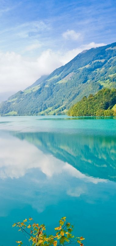 Beautiful Lake Wallpaper 1080x2280 380x802