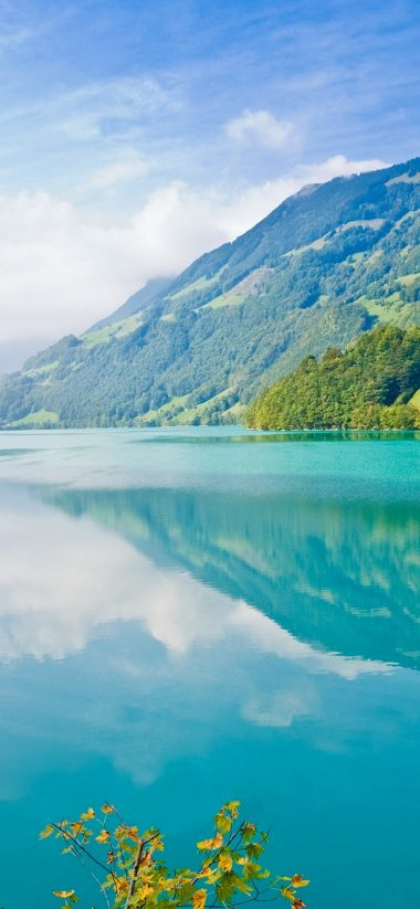 Beautiful Lake Wallpaper 1125x2436 380x823