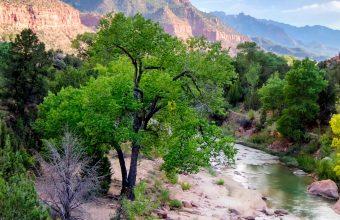 Canyon USA River Nationalpark 1440x2880 340x220