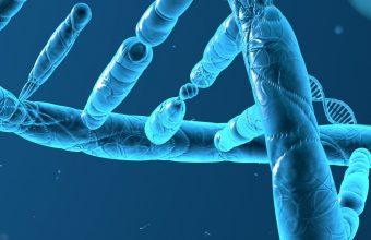 DNA 3 D Structure Molecule 1440x2880 340x220