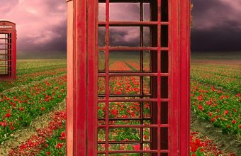 Field Telephone Booths Flowers 1440x2880 340x220