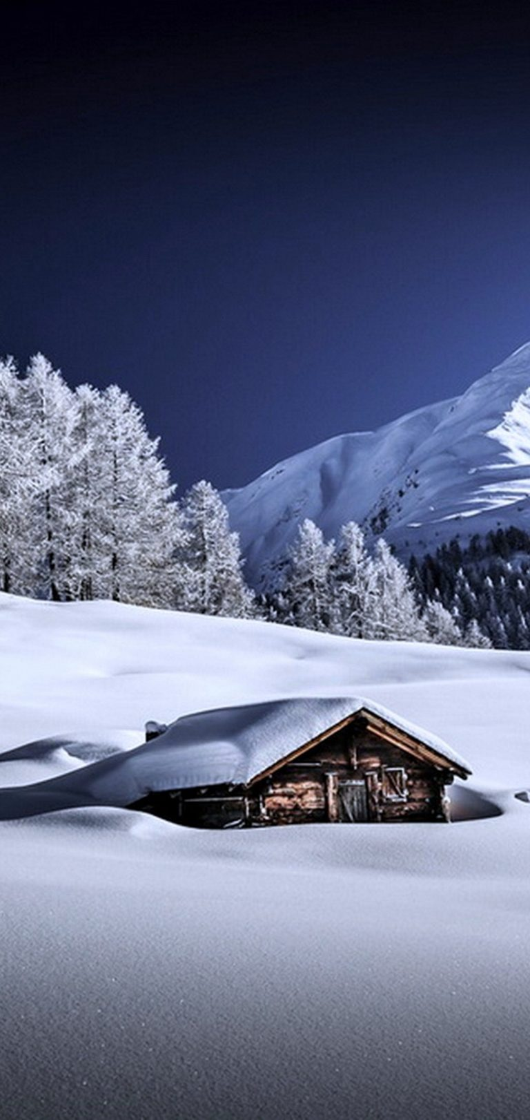 Frozen Winter Wallpaper 1080x2280 768x1621