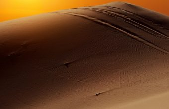 Sun People Desert Camel 1440x2880 340x220