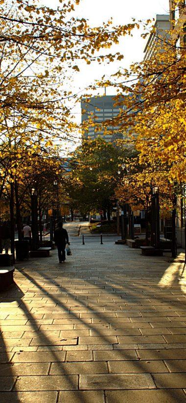 Toronto HD Wallpaper 1125x2436 380x823