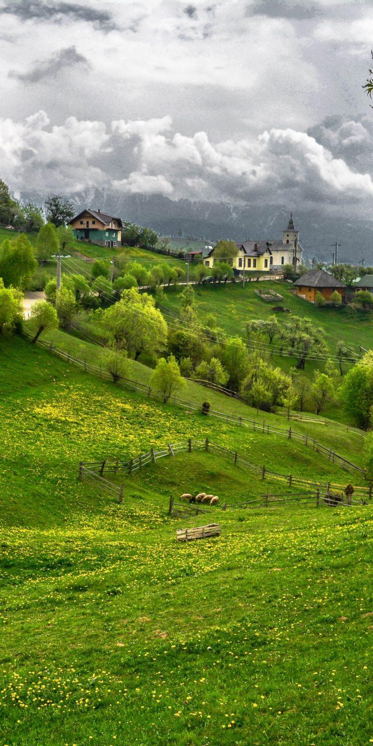 Transylvania Draculas Castle Road 1440x2880 768x1536