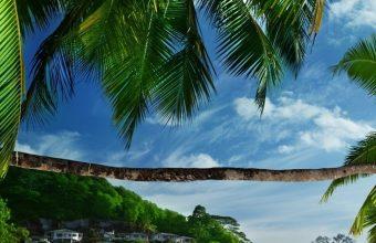 Tropical Beach Wallpaper 1080x2280 340x220