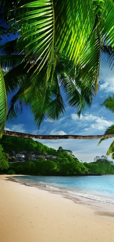 Tropical Beach Wallpaper 1080x2280 380x802