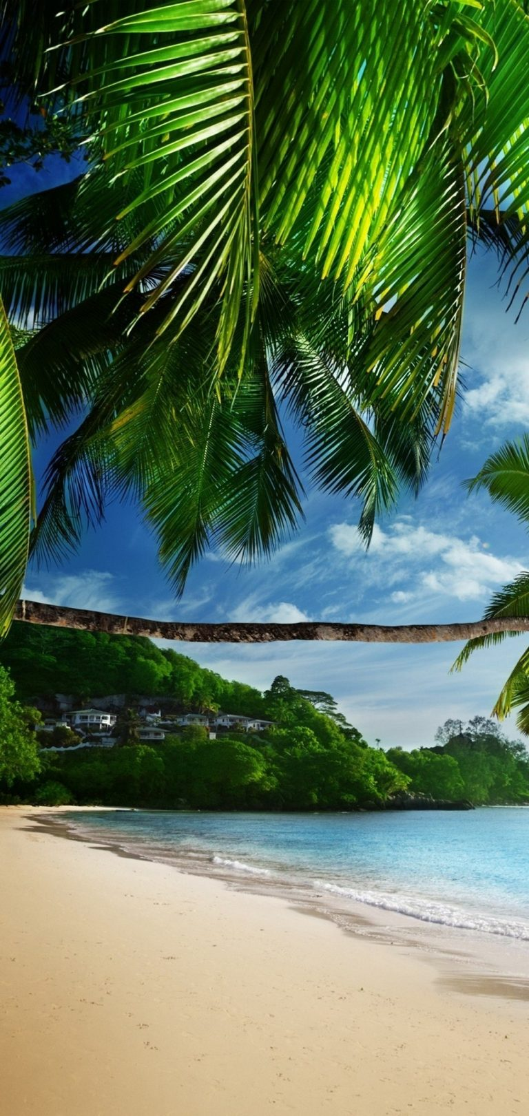 Tropical Beach Wallpaper 1080x2280 768x1621