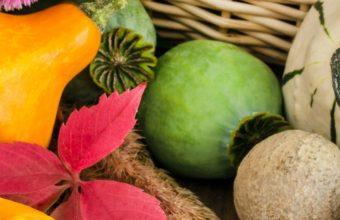 Vegetables Pumpkin Food 1440x2880 340x220