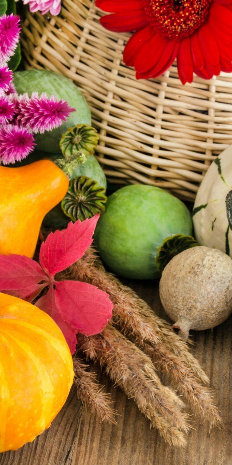 Vegetables Pumpkin Food 1440x2880 768x1536
